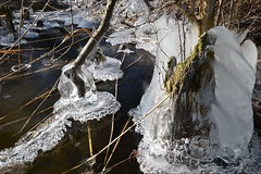 Studie in Kristallbildung (ThomasKohler) Tags: winter lake cold ice see february kalt eis februar studie mecklenburg müritz feisneck seenplatte mueritz mecklenburgische müritzsee mueritzsee feisnecksee kristallbildung
