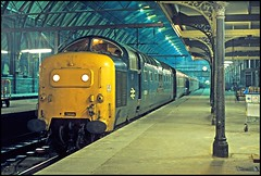 55004 Kings Cross 2Dec77 (david.hayes77) Tags: kingscross 1977 napier deltic ecml class55 55004