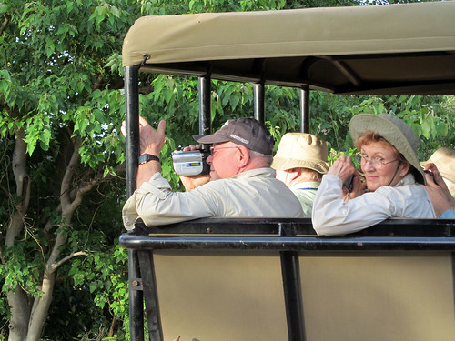 On Safari at Chobe