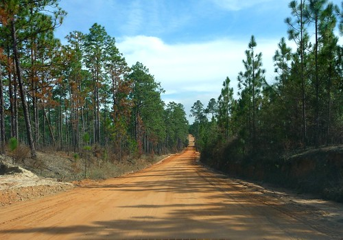 Clay road - Okaloosa County FL