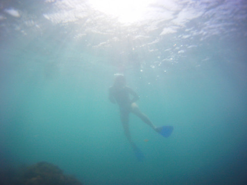 Jamaica Vacation, Negril, Treasure Beach, Montego Bay Feb 4 to 11 2011           -7