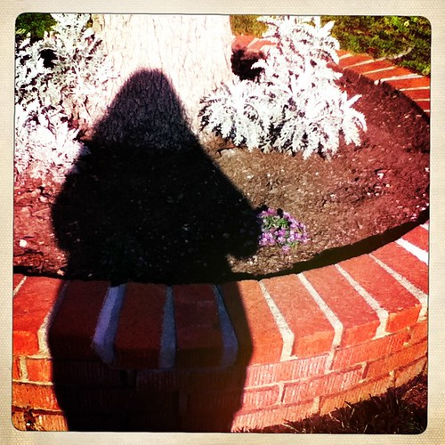 Day 62: My Shadow