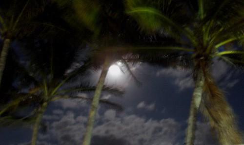 Luna Azul. November 21, 2010 C