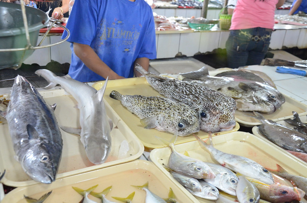 Shark in Palawan Market