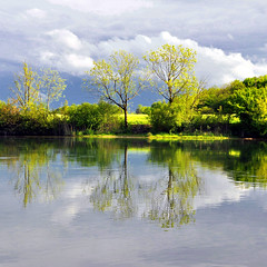 This Magic Moment... (ceca67) Tags: sky reflection green nature clouds river landscape mirror switzerland spring nikon mood bright magic ag moment aargau d90 scweiz ceca idream naturepoetry selectbestexcellence sailsevenseas sbfmasterpiece selectbestfrontpagephoto sbfgrandmaster