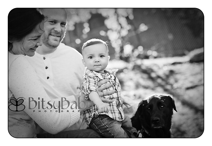 baby photography in annapolis on location