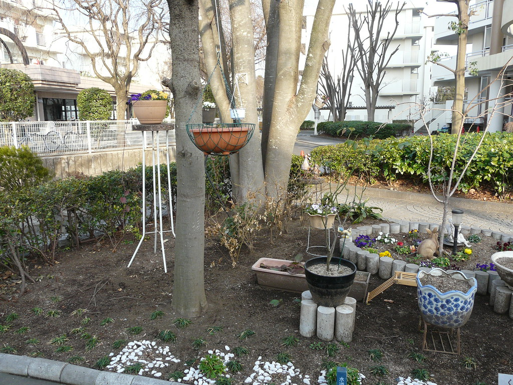 Decorative + Practical Danchi Gardening