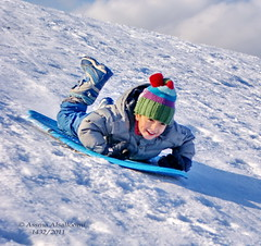 2             Snow Sledding2 (Assma Alsalloomi) Tags: snow kids sledding      sledding2 2