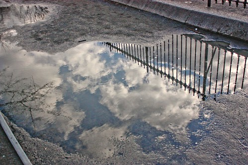 puddles and poetry-017 fixed