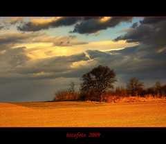 (tozofoto) Tags: trees light sky colors field canon landscape bravo hungary zala tozofoto fleursetpaysages