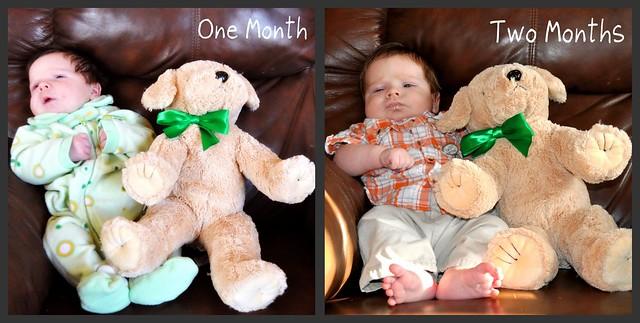 Alex 2 months