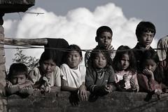 Tali (Nepal) (nepalbaba) Tags: nepal tali 2008 tiharfestival abigfave allegrisinasceosidiventa renatatmexnepalbaba festadeltihar