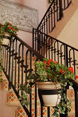 5th Avenue Alley (Studio 934) Tags: travel flower stairs photography coast march iron stair gulf florida case pots ave naples fl avenue fla 5th wrought 2011