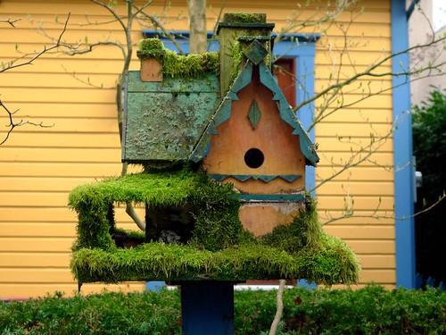 Mossy birdhouse