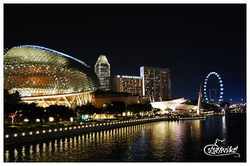 esplanade and singapore flyer