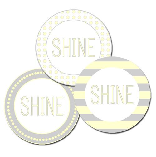 shine ex 1