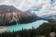Peyto Lake Banff National Park Canada (phhesse) Tags: kanadacanada2016 peyto lake banff national park parc alberta kanada canada 2016 olympus zuiko em10 rocky mountains berge wald wolken grn green blue blau himmel wasser see smaragd hellblau icefield highway 918mm 918 wide angle weitwinkel