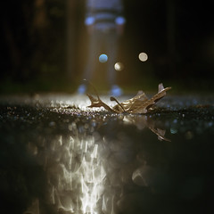 night water light (aleklindus) Tags: greece gr samos yashicad kodak160nc