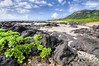 Hawaii (Per Erik Sviland) Tags: hawaii nikon day erik per d300 pererik sviland sqbbe pereriksviland pwpartlycloudy