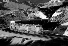 Winter Morning Light On Cajon (greenthumb_38) Tags: railroad morning blackandwhite bw train morninglight blackwhite unionpacific duotone locomotive cajon nicelight cajonpass canon40d jeffreybass cajona