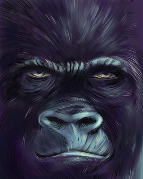 gorilla_01_004copy_sm