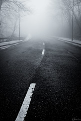 White Stripes (Andreas Strauch) Tags: road bw fog nebel stripes empty leer sw streifen strase leicam8
