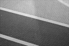 pflaster (loop_oh) Tags: show 3 germany buch deutschland book hessen fairground frankfurt main bank books fair messe trade halle frankfurtammain frankfurtmain buchmesse roemer bookfair metropole rmer mainhattan messefrankfurt buecher eintracht messehalle frankfurtam exhibitionsite bher pavemenr bookingtrade