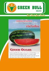 "hạt giống dưa hấu ""Green Ocean"" เมล็ดพันธุ์แตงโม ""กรีนโอเชียน"""