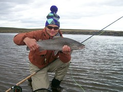 (Nervous Waters) Tags: argentina fishing flyfishing trout browntrout searunbrowntrout kautapen