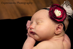 Emery 3 days old (eldouglas) Tags: northbayontario seanwalsh bestphotographers expressionsphotograhy tanyapurdonwalsh