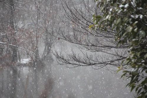 雪でぼやけた水面