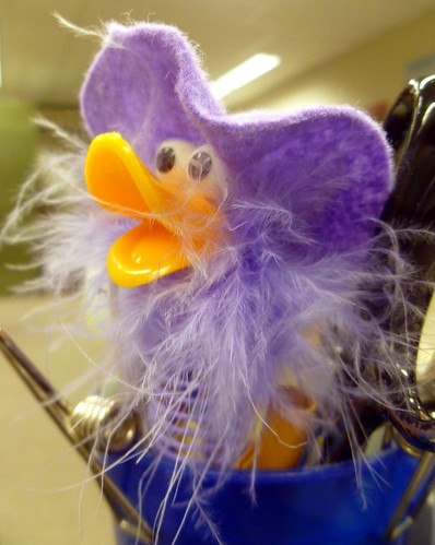 purple fuzzy duck