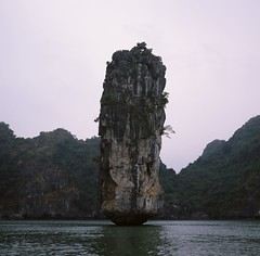 Ha Long Bay (b_skerratt) Tags: color 120 6x6 tlr film rollei mediumformat square boat fuji slide vietnam normal positive karst fujichrome provia100f halongbay rvp xenar rolleicord schneiderkreuznach 75mm