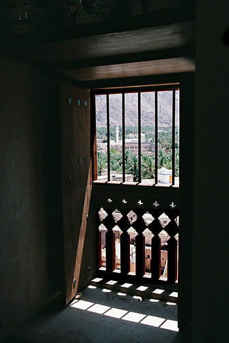Through-the-fort-window