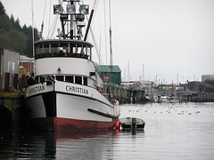 Christian (Gillfoto) Tags: fish water seine work boat fishing raw working lifestyle christian catch troll produce hook fishingboat find bait rugged chum resource southeastalaska saltwater haulout fishery pullout trawl quota commercialfishingboat commercialboat alaskafishingboat classicfishingboat