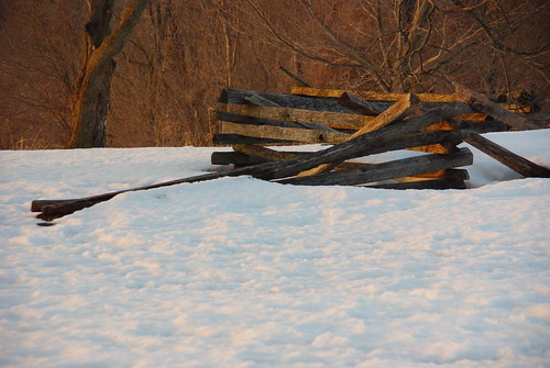 """Worm"" fence at Valley Forge"