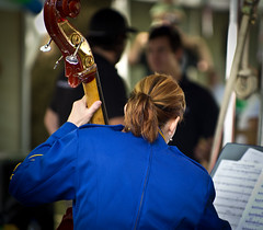 Canberra Multicultural Festival (photo obsessed) Tags: people musician person australia canberra persons performer act doublebass oceania australiancapitalterritory canberramulticulturalfestival eventsandfestivals canberracityband