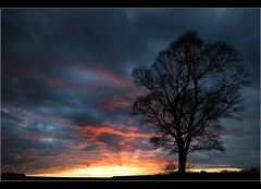 Last Light...... (Digital Diary........) Tags: crank billinge sunset fire tree busy goodlight sthelens clouds chrisconway wwwchrisconphotocom