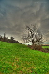 robinswoodtree (TCR4x4) Tags: uk sky tree field landscape march countryside nikon country hill sigma gloucestershire gloucester 1224mm hdr robinswood nikond700