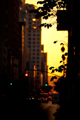 Manhattanhenge (DaveMosher) Tags: city sun solar manhattan manhattanhenge