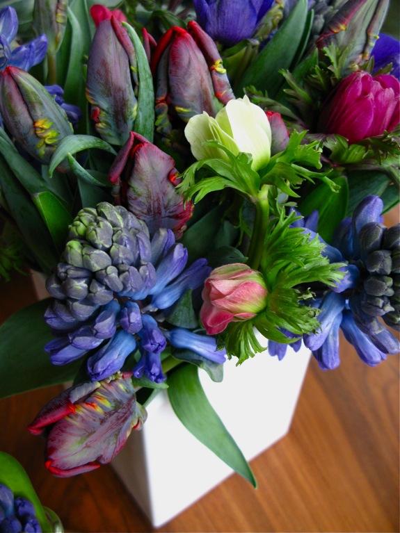 tulip hyacinth anemone flowers 002
