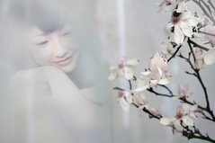 """Rare Thing"" (helmet13) Tags: woman reflection smile poster raw cherryblossom windowshopping d90 100faves peaceaward heartaward world100f"