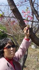 2011 0313 清境_2 by jackchen40