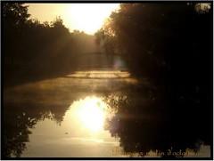 Lev de soleil (Loc Rolas) Tags: bridge lac reflet pont reflexion matin sushine levdesoleil lognes torcy