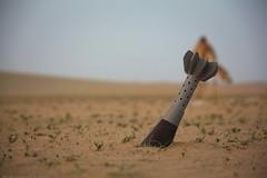 Earth War (M...Aman) Tags: canon war earth mark ii f l 5d kuwait mm 35   28300