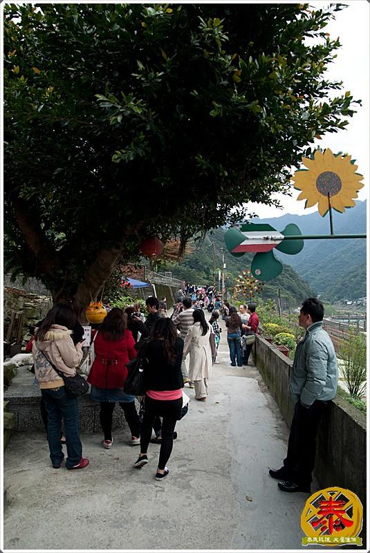 2011-03-19侯硐阿喵村  (6)