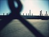 (TOPSHELFJUNIOR) Tags: california fence warehouse nascar chainlinkfence fontana californiaraceway aaaraceway nascarfontana