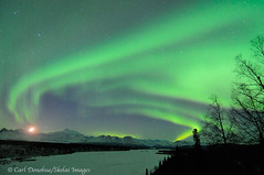 Aurora borealis and Denali, Denali State Park, Alaska. (Skolai-Images) Tags: sky moon horizontal night landscapes nighttime denali mckinley setting scenics northernlights auroraborealis horizontals waxingcrescent carldonohue skolaiimages