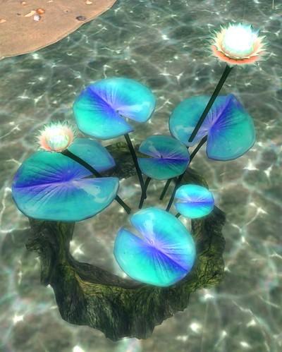 Glowing Lotuses