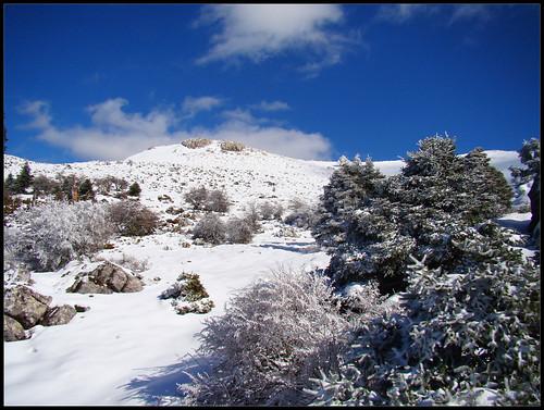 Ruta Torrecilla (14)